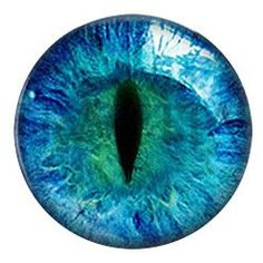 """Cat Eye"" Jewelry Set"