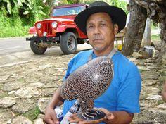 Totumo, morro, jícaro/a, calabaza, gourd. Luis Francisco Villegas   Técnica del Totumo ahumado artesanías de Colombia