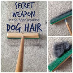 A vacuum isn't the best at picking up dog hair. This one simple, inexpensive tool and a spray bottle is all you need to totally erase dog hair from your carpet.