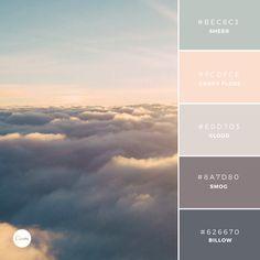 Color Combination: Vanilla Skies #bec6c3 #fcdfce #e0d7d3 #947d80 #626670