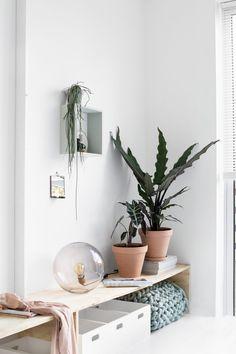 De woonstijl Green House in de slaapkamer! Moois uit de natuur, dat staat centraal in deze woonstijl. In dit blog een hele DIY wand vol met inspiratie!