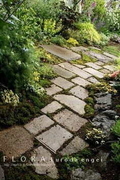 64 Ideas For Outdoor Patio Diy Stones Pathways Amazing Gardens, Beautiful Gardens, Garden Signs, Colorful Garden, Diy Patio, Front Yard Landscaping, Garden Paths, Garden Paving, Shade Garden