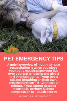 Emergency tips for pets - How to give your dog or cat mouth to nose resuscitation? Find pet first aid tips here.