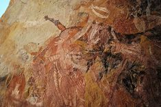 kangourous, barramundis et autres animaux. Injalak, Terre d'Arnhem, Territoire du Nord, Australie