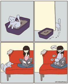 ¿¿Por qué les gusta tanto mirar fijamente las paredes completamente vacías?? Y otras preguntas que tomamos de la página 'Cat Versus Human'.