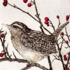 'Wren In Winter' By Printmaker Sarah Bays. Blank Art Cards By Green Pebble. www.greenpebble.co.uk