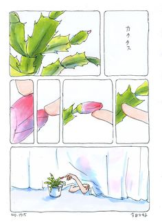 manga | christmas cactus Cactus Illustration, Graphic Illustration, Easter Cactus, Orchid Cactus, Anime Stories, Christmas Cactus, Watercolor Sketch, Manga Characters, Drawing Techniques