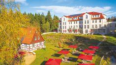 Naturresort Schindelbruch im Südharz gewinnt Tourismus-Award Painting, Art, Lighthouse, Tourism, Economics, Vacation, Nature, Painting Art, Paintings