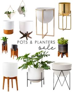 Midcentury Modern Planters with Stands: 10 Stylish Pots for Houseplants | Gypsy Tan