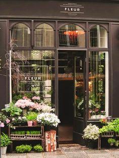 F l e u r by judit besze flower market, flower shops, flower cafe, belle villa, Flower Cafe, Flower Shops, Flower Market, Cactus Flower, Vitrine Design, Flower Shop Design, Design Shop, Flower Shop Decor, Store Front Design