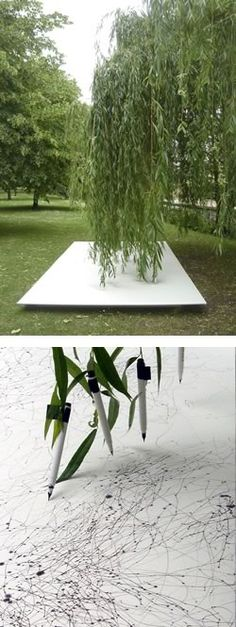 50 pens suspened from the branches of a Weeping Willow tree create a drawing on 4 panels placed horizontally beneath the tree.