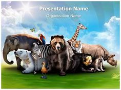 Dolphin powerpoint template is one of the best powerpoint templates download editabletemplatess premium and cost effective wild animals toneelgroepblik Gallery
