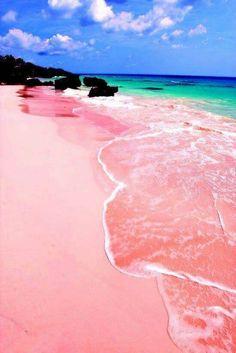 Plage de sable rose sur l'île de Harbour aux Bahamas