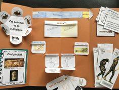 Montessori Education, Home Schooling, Homeschool, Study, History, Kids, Culture, Socialism, Notebook