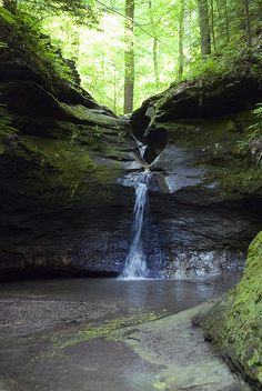 Waterfall, Turkey Run State Park, Indiana. Our family used to camp here when I was young  :)