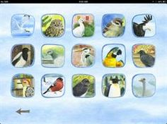 Birdstown iPad App - Reviewed & Recommended