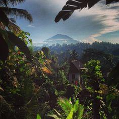 15 Things Every Volunteer In Bali Should Do | Volunteer Overseas
