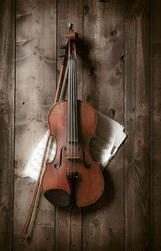 Would love to learn how to play the violin one day