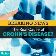 fungus may trigger crohn's disease - Dr. Axe http://www.DrAxe.com #health #holistic #natural