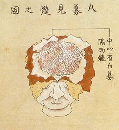 Kaishihen (Dissection Notes), 1772 Japan's fifth human dissection -- and the first to examine the human brain -- was documented in a 1772 book by Shinnin Kawaguchi, entitled Kaishihen (Dissection Notes). The dissection was performed in 1770 on two cadavers and a head received from an execution ground in Kyōto.