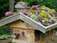 Insektenhotel mit Dachbegrünung
