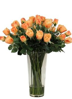 Askham Flower & Gift Delivery for all occasions. Whether you are looking for luxury or budget, our flower shops have what you are looking for. Gift Delivery, Silk Flowers, Planting Flowers, Glass Vase, Roses, Peach, Cape, Plants, Gifts