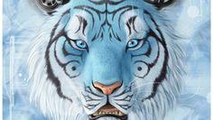 tiger computer backgrounds wallpaper by Chapelle Kingsman (2017-03-08)