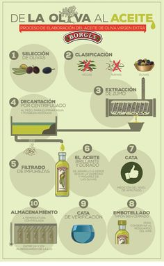 Borges - Mediterranean Cuisine - We bring you the taste and health of the Mediterranean cuisine, its best recipes and ingredients: extra virgin olive oil, dressings, pasta Spanish Olive Oil, Mint Plants, Pin On, Olive Tree, Cata, Fresh Herbs, Good Food, Health, Chalkboards