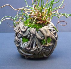 Nice bonsai pot idea to use coils to make it look like roots.