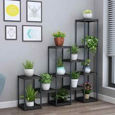 Indoor Plant Pots, Potted Plants, Fabrication Work, Plastic Windows, Decoration Plante, Flower Stands, Pot Rack, Layout, Plant Decor