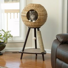 """Sauder 44"""" Sphere   •Overall: 43.7"""" H x 19.88"""" W x 21.65"""" D  Wicker sphere with two access holes. Machine washable bed cushion. Carpeted base includes toy on elastic string. Leg with sisal rope cover for scratching. $160 (free shipping) at Wayfair"""
