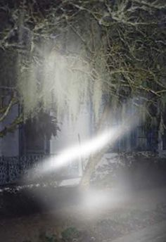 The Owensboro Ghost Photo The Owensboro Ghost Photo is a really great ghost photo to blow up and inspect and investigate until cows come home. I personally believe that this ghost photo shows other worldly beings. Maybe it's a ghost a spirit or a demon. The idea of what are who it is, this of course is hard to figure out. But the Photo is authentic and many say down right amazing.