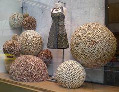 vitrine boutique anthropologie