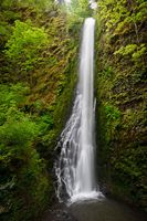 The largest database of information about waterfalls in the Pacific Northwest Molalla Oregon, Shotgun, Pacific Northwest, North West, Road Trips, Places To See, Things To Do, Waterfall, To Go