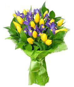 Букет состоит из 19 тюльпанов, 8 ирисов и 7 рускусов  http://www.dostavka-tsvetov.com/shop/57/desc/morskoj-briz