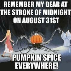 List Of Memes, Dankest Memes, Funny Memes, Jokes, Fall Humor, Fall Memes, Fall Quotes, Samhain, Mabon