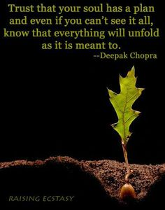 "Deepak Chopra: ""Trust that your soul has a plan and even if you can't see it all, know that everything will unfold as it is meant to."" ..*"