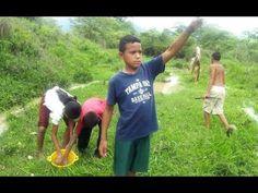 Llueven peces, fenómeno en Honduras Cae lluvia de peces en Yoro1