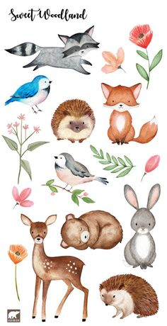 Watercolor Woodland Clipart hand drawn and painted watercolors Fox Deer Racoon Hedgehog Rabbit Birds and Bear digital clip ar Woodland Creatures, Woodland Animals, Watercolor Animals, Watercolor Paintings, Watercolor Stickers, Watercolor Bird, Watercolours, Cute Drawings, Animal Drawings