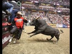pbr bulls meat hook - Bing Images