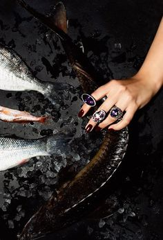 Here, the ice boxes are filled with shrimps, oysters and fish, and the cooks are serving quick meals Best Fish Restaurant, Quick Meals, Oysters, Seafood, Rings For Men, Dishes, Cooking, Boxes, Ice