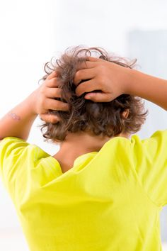 How to Get Rid of Head Lice, in One Easy Guide | Experts explain everything you could possibly need to know to make everyone less itchy and more comfortable.