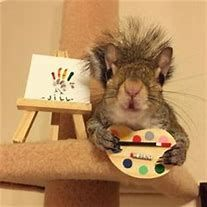 Image result for Jill the Squirrel Instagram