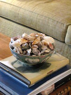 shells in a beautiful bowl