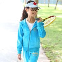 High Quality 2017 Spring Fall Girls Fashion Velvet Sweater Suit Children's Clothing Kids Sport Clothes Hoodies Pants Twinset G86