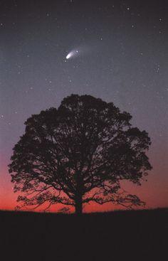 beyond the stars★