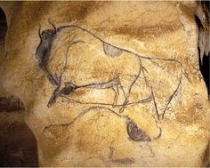 A Gallery of Cave Paintings from the Chauvet Cave as part of the Bradshaw Foundation France Rock Art Archive. The Chauvet Cave is one of the most famous prehistoric rock art sites in the world. Chauvet Cave, Lascaux, Religions Du Monde, Paleolithic Art, Cave Drawings, Painting Gallery, Art Sites, Indigenous Art, Rock Art