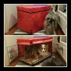 Koiran häkinpäällinen vanhoista verhoista
