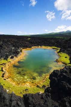 ✯ Ahihi Kinau Natural Reserve, Anchialine pond - Maui, Makena, Hawaii