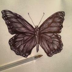 Biro butterfly